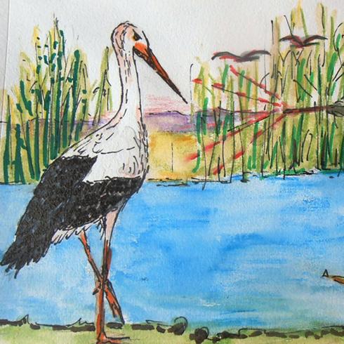 Cuentos aves Benilde Edo Edo Pintora